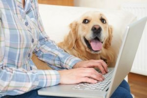 Is U.S. pet food spending holding up into COVID-19 year 2?