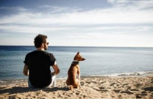 Millennials to the rescue for pet food