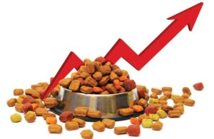Pet food data: US spending up, pet owners turn to vets