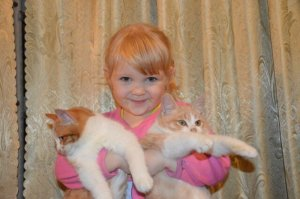 Growing Up With A Cat May Help Prevent Asthma In Children