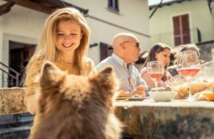 Humanization of dogs' diets from two research perspectives