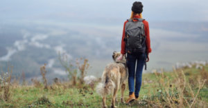 How to Prepare your Dog for a Hike