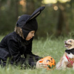 Trick-or-Treat: Should You Bring Your Dog Along?